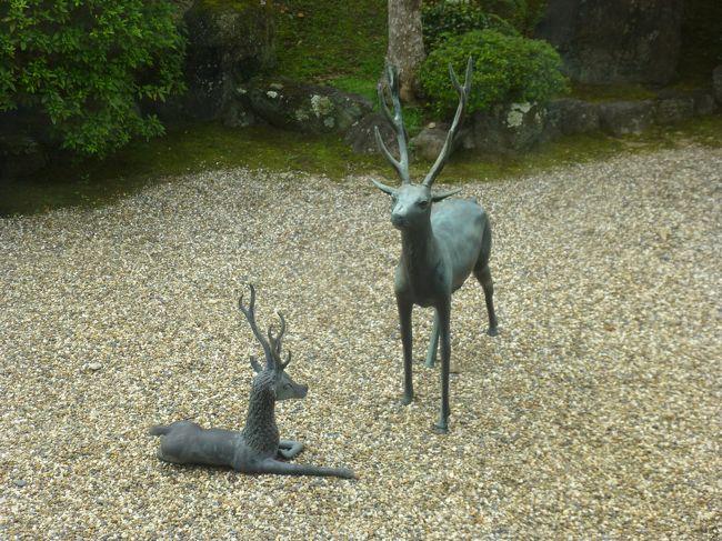 今日は奈良の新薬師寺近くの志賀直哉旧居の隣にあるお店でお昼を食べて奈良を散策です。奈良散策と言っても今日は生きた鹿に出会わず。<br />高畑で昼食 → ならまち → 猿沢の池 → もちいど商店街<br /><br />奈良公園に行かなかったので鹿と遊べませんでした。暑い奈良でも旅行者はたくさん来られていました。<br /><br /><br />