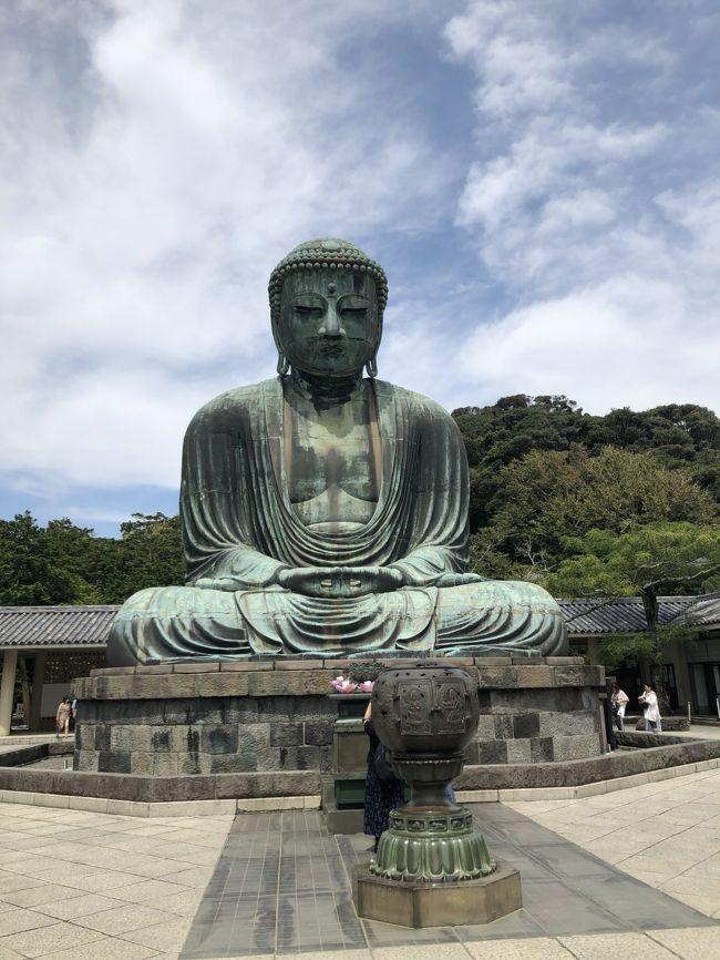 朝晩は少し風が涼しいなと思っていたら、やっぱ昼間は暑い!<br />江ノ電のフリーパス「のりおりくん」を購入して、鎌倉から出発。<br />長谷でランチとお寺巡り、極楽寺でお寺巡り、鎌倉高校前駅まで行って鎌倉へ戻り<br />鎌倉では、小町通りを散策してきました。<br />やっぱり外国人がすっごい増えていますね。