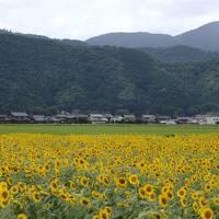 2019年 「海」を楽しむことができなかったお盆休み(ノ´□`)ノ 熊川宿・三方五湖・敦賀