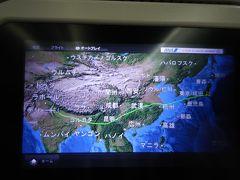 インドに呼ばれた?初めてインドはANAツアーで・・1日目成田経由デリーへ。