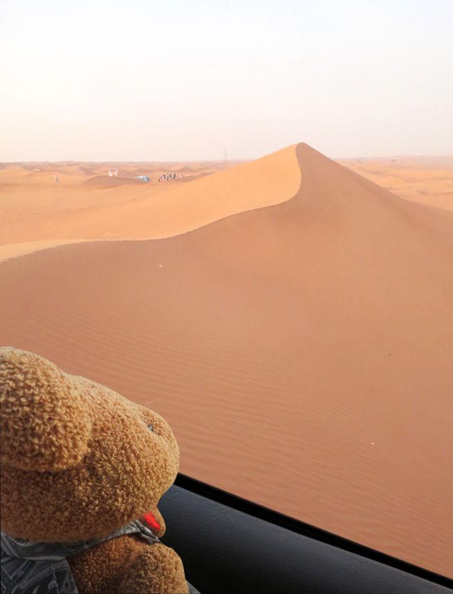 10年ぶりのドバイでリベンジ(9)車酔いとは無縁(^^)デザートサファリで砂漠を駆ける