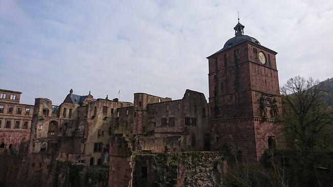 ハイデルベルク城を入場見学した後、ハイデルベルク旧市街を散策しました。<br />古城と旧市街のハイデルベルクの街は中世ヨーロッパそのままでした。<br />