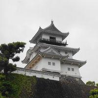 遠江国の一宮と掛川城