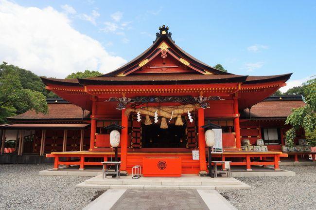 静岡県の一の宮と久能山東照宮に参るため、静岡駅前に3泊しました。<br />静岡グルメも堪能、特に静岡おでんが気に入りました。<br />