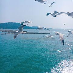 2018年4月 三重県1泊2日の旅2: 鳥羽湾めぐりとイルカ島の遊覧船クルーズ