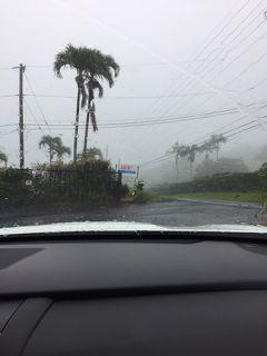 2019年サマーバケーションは9度目のハワイ島+初のマウイ島10日間(*^-^*)3日目Part2〜どしゃ降りのコナコーヒーロードを行く!!