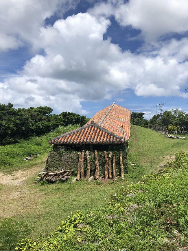 待ちに待った夏休み!!今年は家族で沖縄へ。<br />美ら海周辺を中心に自然に触れ合う旅でした。