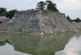 2018春、中国西部の百名城巡り(16/28):4月4日(2):萩城(2):朝の散策、指月山、天守台、堀、満開の桜