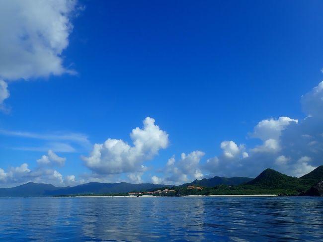 羽田からの直行便で石垣島へ。<br />前泊して早朝便に乗ったからか、石垣島での最初の2日間は倍くらいに感じました。<br />シュノーケリング初体験(正確にはアフリカで体験したけど、船酔いの記憶しかない)は、あまりのへっぴり腰で我ながら笑えました。<br /><br />心配していた天気は、ほぼ全日晴天。<br />夜振ったり、にわか雨は振られたりしましたが、行程には影響しませんでした。<br /><br />今回はカメラ2台体制で、両方ともレンタル。<br />オリンパスのTough TG-5と、Gopro7を連れて行きました。