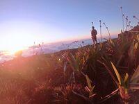 最果ての絶景-The Prow☆もしかして、日本人で初踏破かも!?【ロライマ山Trek Day4 】アラフィフ&アラ還のベネズエラ-5