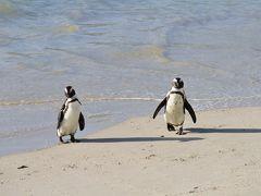 161. 弾丸アフリカ縦断政策 Day 4 ペンギンビーチと軽く街ぶら