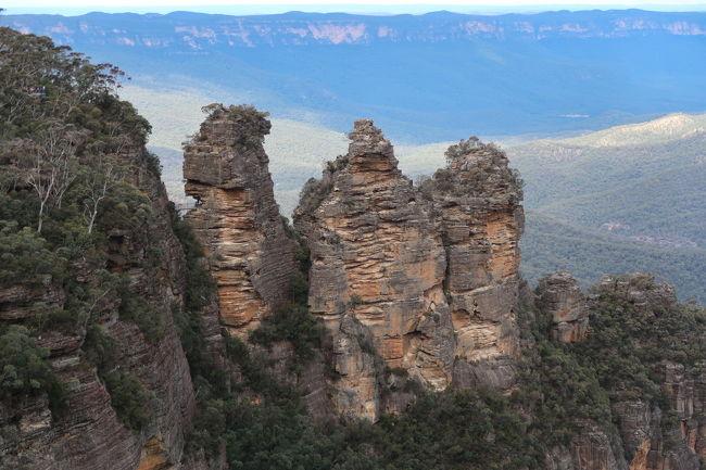 恐らく物心ついた頃から外国として認識していた最初の国がオーストラリア。<br /><br />両親が新婚旅行で行ったウルルの写真を見てからだと思う。<br />いつからか、両親を連れてまたウルルに行くことが一番の親孝行だと思って、今回の旅行まで行くことがなかったオーストラリア。<br /><br />ウルル登頂が終わってしまう日を目前に、両親と3人で駆け込んで行ってきました。<br />2019年夏休み オーストラリア旅行!<br /><br />個人的には初めての南半球!<br />久々のCITY旅行でウキウキ☆<br /><br />色々と…ありました。<br />両親は慣れない海外に疲れたと思うけど、<br />私は行けて良かったとは思ってます。ただし、残るモヤモヤw<br /><br />それはそうと、夢に見たウルルを目前にして、さすがに涙出ました。<br />やっぱり私は自然が作ったものの方がすごいなと感じるし、好きです。<br /><br />歴史は今まであまり勉強してこなかったこともあって、人々が作ってきたものも素晴らしいと思うのですが、やはりそこまで興味が持てない。<br /><br />でも、自然が作ったものを、守ることも、壊すこともできるのが人間なんですね。<br /><br />以下、旅程です。<br /><br />・概要<br />4泊7日<br />シドニー2泊<br />ウルル2泊<br /><br />・フライト<br />羽田-シドニーは往復ANA<br />シドニー-ウルルは往復Virgin Australia<br /><br />・ホテル<br />シドニー The Westin Sydney<br />ウルル Outback Pioneer Hotel<br /><br />・オーストラリアドルレート<br />カードの請求ではだいたい73円前後でした。<br /><br />全て個人手配です。<br /><br />8/9(金) 22:30 HND NH879<br />8/10(土) 08:55 SYD シドニー観光<br />---今回の旅行記--<br />8/11(日) ブルーマウンテンズ観光<br />-----------------------<br /><br />8/12(月) 10:05 SYD VA1627<br />同日 13:15 AYQ<br />8/13(火) ウルル観光<br />8/14(水) 13:50 AYQ VA1628<br />同日 17:20 SYD<br />同日 20:55 SYD NH880<br />8/15(木) 05:25 HND<br /><br />今回の旅行記はシドニー編でお送りします。