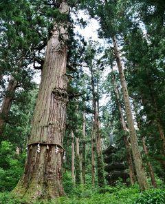 山形の国宝を観る旅@出羽三山神社*爺杉*国宝 五重塔