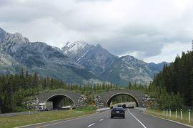 初夏のカナディアン・ロッキー2019 Day4-5(Lake LouiseからCanmoreまでドライブ)