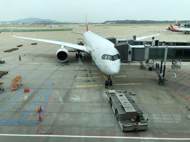 SFC修行2回目は、アシアナ航空のビジネスクラスを利用します。シンガポールには入国しないSINタッチ。復路で韓国に入国し、少し観光をしてきました。写真はバラバラです。