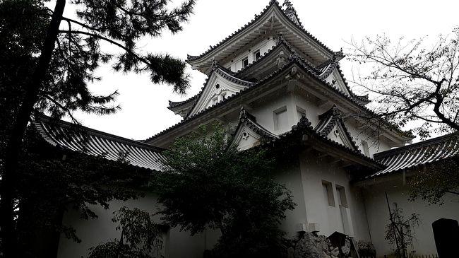 2019年 出張ついでの4トラ日本地図 色塗りの旅 【中部地方攻略編】