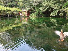 静岡の旅行記