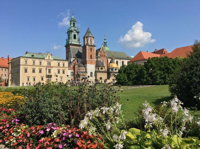 2019夏 中欧の旅 チェコ・ポーランド周遊⑤