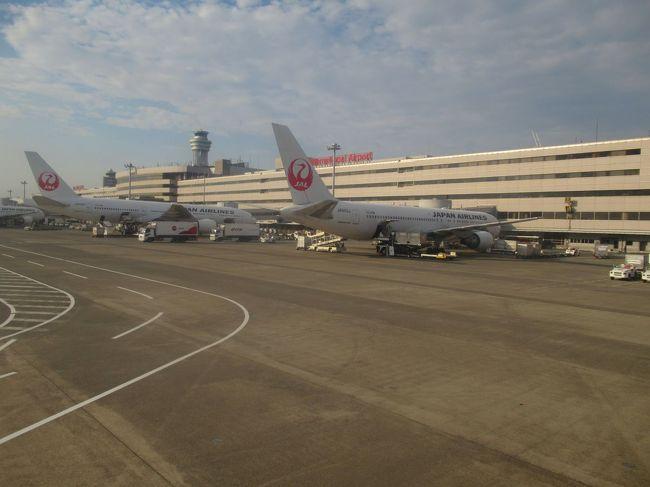 5日間の東北三県めぐりの旅も終わりになります。<br />青森空港からJALのクラスJに乗って羽田空港へ帰ります。<br />真夏の暑いさなかでしたが、思い出深いとても素敵な旅になりました。