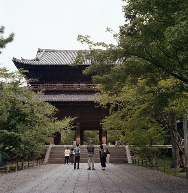 高台寺をあとにして。<br /><br />東山地区を歩き大好きな南禅寺へ。<br /><br />それからが大変でした。<br />夢中になるほど怖いものは無い(笑)って旅行記です。<br /><br />殆の写真はフィルムカメラで撮っております。