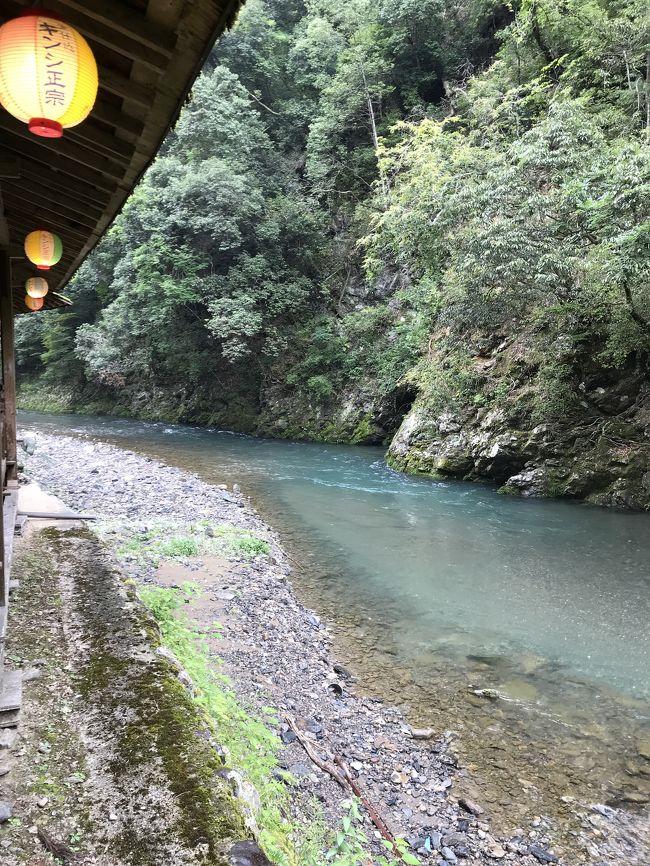 夏の風物詩、川床と言えば京都の貴船か高尾の川床が直ぐに浮かびます。毎年一度は行ってみたいなと思ってましたが、個人ではなかなか敷居が高く行けませんでしたが渡月橋付近での遊覧船の乗船も組まれていてお得感満載でした。バスツアーでお手頃価格のが有りウォーキング仲間と一緒に飛びつき申し込みしました。最後には嬉しいサービスが有り満足出来たツアーでした。