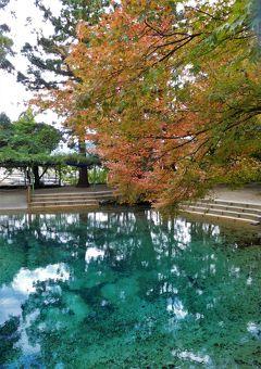 2018年10月 山口県・美祢市 コバルトブルーの別府弁天池と個人の庭・安藤庭園