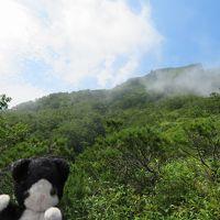 夏の層雲峡と美瑛と旭山動物園