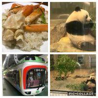 上野動物園deお初シャンシャン&モノレール惜別?乗車 その1