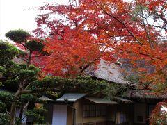 2018年11月 佐賀県の後編 九年庵の紅葉と隣の仁比山神社参拝