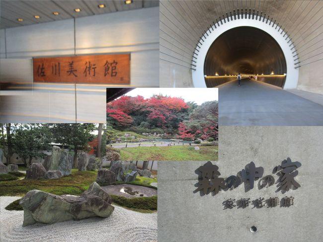 """冒頭の写真は左上から佐川美術館、MIHO MUSEUM、左下から重森三玲庭園美術館、和久傳の森「森の中の家 安野光雅館」そして真ん中が青蓮院門跡の庭園です。  <br /><br />今回参加したツアーは、<br />『芸術の秋に訪れたい """"日本の美""""とつながる関西4つの美術館をめぐる3日間』<br />という内容です。<br /><br />訪れた美術館などは<br />佐川美術館<br />MIHOMUSEUM<br />重森三玲庭園美術館<br />和久傳の森「森の中の家 安野光雅館」<br />青蓮院門跡<br />など<br /><br />納屋孫:滋賀県五個荘で鴨鍋、鰻・名物鯉筒煮、松茸と鱧の出合い鍋、琵琶湖の天然スッポッン鍋、鮒鮓(ふなずし)などの老舗<br /><br />すえのべ料理 魚仙:和食料理店、山海湖里の美味と信楽焼の器が織りなす四季折々のすえのべ料理<br />一押しは、刻み大葉を添えた鯉の紫蘇油焼<br />「魚仙」が謳う""""陶の辺(すえのべ)料理""""とは、あるとき店に訪れた歌人によって付けられた名です。信楽の""""陶器""""を意味するだけでなく、この地の風を""""陶酔する""""ほど感じられるという意味が込められました。<br /><br />守山・琵琶湖マリオットホテル<br /><br />京都・ホテル日航プリンセス京都<br /><br />"""