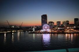 冬の神戸 1泊2日 神戸餃子とラッコを求めて① 出発~ランチ
