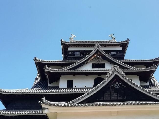 日本史好きな息子たちを連れて、城巡りの旅を楽しんでいます。<br />国宝(姫路・彦根・犬山・松本)の城を全て訪れたと思っていたら、2015年に新たに松江城が国宝に。<br />いつか行くぞ!と思っていたのがやっと実現しました。<br />長男の夫は不参加。<br />中1次男との2人旅。<br />東京から神戸への帰省を絡めて、島根と鳥取を楽しんできました。<br /><br />1日目:羽田空港→米子空港→松江<br />2日目:松江→鳥取<br />3日目:鳥取→神戸