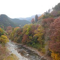 秋 紅葉を楽しむために 2日目 奥多摩のセラピーコースを歩く5・5km