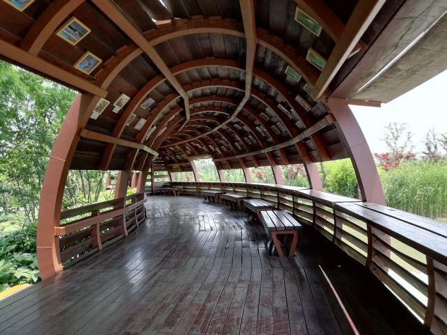 『慎重にスライド』とはどうすれば良いのか?観鳥廊はバードウォッチング♪運河三湾風景区 2019年6月中国 揚州・鎮江7泊8日(個人旅行)90
