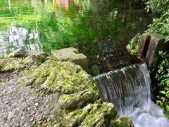 18きっぷで身延線乗りつぶし!富士山の湧き水を飲んでエビフライ食べて甲府の草津温泉に行った話
