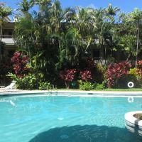 6泊8日・22年ぶり4度目のハワイ・オアフ島⑥