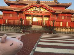 春の沖縄 2泊3日の卒業旅行