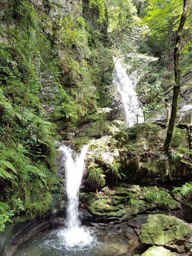 今年の夏は暑い!少しでも涼しいところはないかと探していたら、いがいに近場に滝がある。越生といえば梅林が有名だけれど、滝もあるんだな。早速行って見よう。