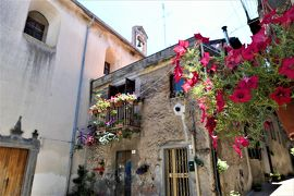 魅惑のシチリア×プーリア♪ Vol.479 ☆ランダッツォ:夏の旧市街は花がいっぱい♪