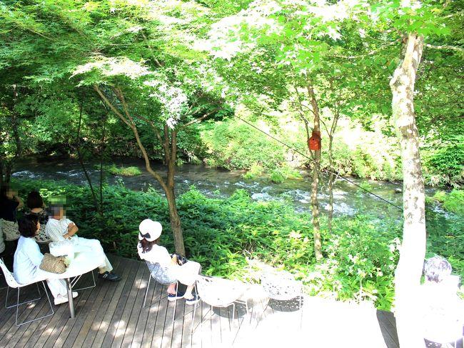 夏になると軽井沢に行きたくなる…そんな人は世の中多いはず(笑)<br />もちろん、私もその1人♪<br />夏真っ盛りの暑い京都から、避暑と呼ばれる軽井沢へ、ほんの少しだけでも逃避したいなぁ~と、計画した夏旅だったけれど、あれ???今年は全然暑くならないわー。<br />ちょっとだけ、避暑軽井沢の有り難みが薄くなっちゃった感じだけれど、やっぱり楽しい~軽井沢☆<br />軽井沢…っていうか、長野に来ると、絶対に外せない食べ物、それがツルヤスーパーのお惣菜の山賊焼き♪<br />旦那様は、長野出身なので、山賊焼きは幼い頃から食べていた懐かしいものらしいけれど、ツルヤスーパーのものが彼にとって1番らしい。<br />だから、軽井沢滞在時に必ず1食は部屋食を入れないとダメなのよねー(笑)<br />たくさん行きたいレストランがある中での部屋食は、私的には勿体無いんだけれど…<br />だって、行きたいお店がいっぱいあるんだもの。<br />でも、そこはグッとこらえてツルヤスーパーの山賊焼きを食べましょう。<br />今年も定番から新しいお店まで、たくさんの美味しいもの楽しんできました!!<br />そんな軽井沢旅の後編のご紹介です~♪<br /><br /><br />旧軽井沢KIKYOキュリオコレクション  https://www.kyukaruizawa-kikyo.com/<br />軽井沢発地市庭  https://karuizawa.hotchi-ichiba.com/<br />サジロカフェ  http://sajilocafe.jp/<br />ハルニレテラス  https://www.hoshino-area.jp/shop<br />シェ草間  http://chez-kusama.com<br />浅野屋  http://www.b-asanoya.com