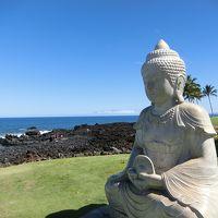 2019年6-7月【7】 21年ぶり2度目のハワイ島  オーシャンタワーを満喫してから帰国まで