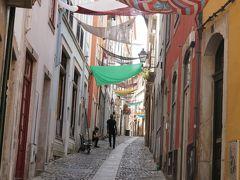ポルトガルで夏休み 念願のコインブラ大学ジョアニナ図書館に行く!
