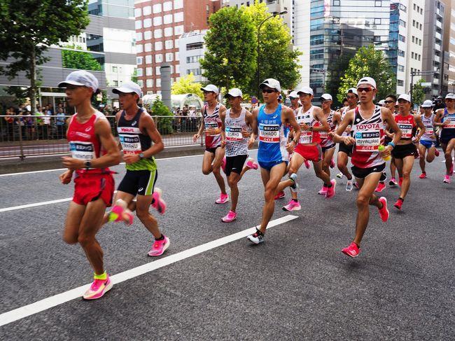 東京オリンピックのマラソン代表を決めるレース、マラソングランドチャンピオンシップ(MGC)観戦に行きました。<br /><br />10km過ぎの茅場町駅近くと、33km手前の二重橋折り返しを観戦ポイントに選びました。<br /><br />真夏の暑さよりは若干穏やかなものの、フルマラソンを走るには過酷すぎる気象条件。<br /><br />沿道の最前列で観戦するには早めに並ばなければならず、日影のポイントが人気のような印象でした。