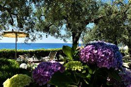 魅惑のシチリア×プーリア♪ Vol.506 ☆レトジャンニ:美しいリド「パラディーセビーチクラブ」青いプールとアジサイ♪