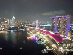 シンガポールアラフォーひとり旅2植物園~ブギス
