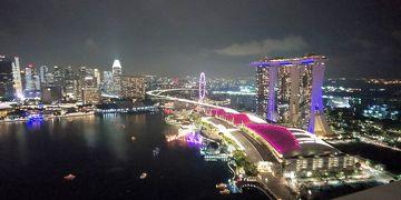 シンガポールアラフォーひとり旅4 ガーデンズ・バイ・ザ・ベイとレベル33