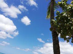 夏休み!盛り沢山の3島巡り まるっとチャーターパート4オアフ編