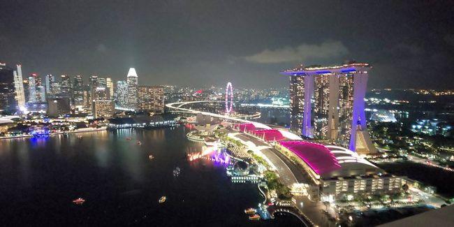 シンガポールアラフォーひとり旅6 リトルインディア~帰国