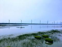 台南・台中・台北旅行(三日目 台中)高美湿地と宮原眼科