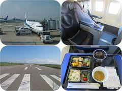 残暑の九州(11終)ANAプレミアムクラスで佐賀空港から羽田空港へのフライト